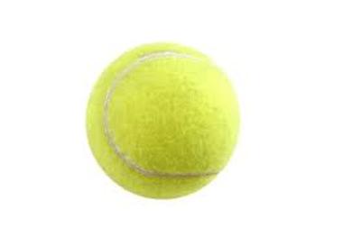 Piłka tenisowa DUNLOP Fort